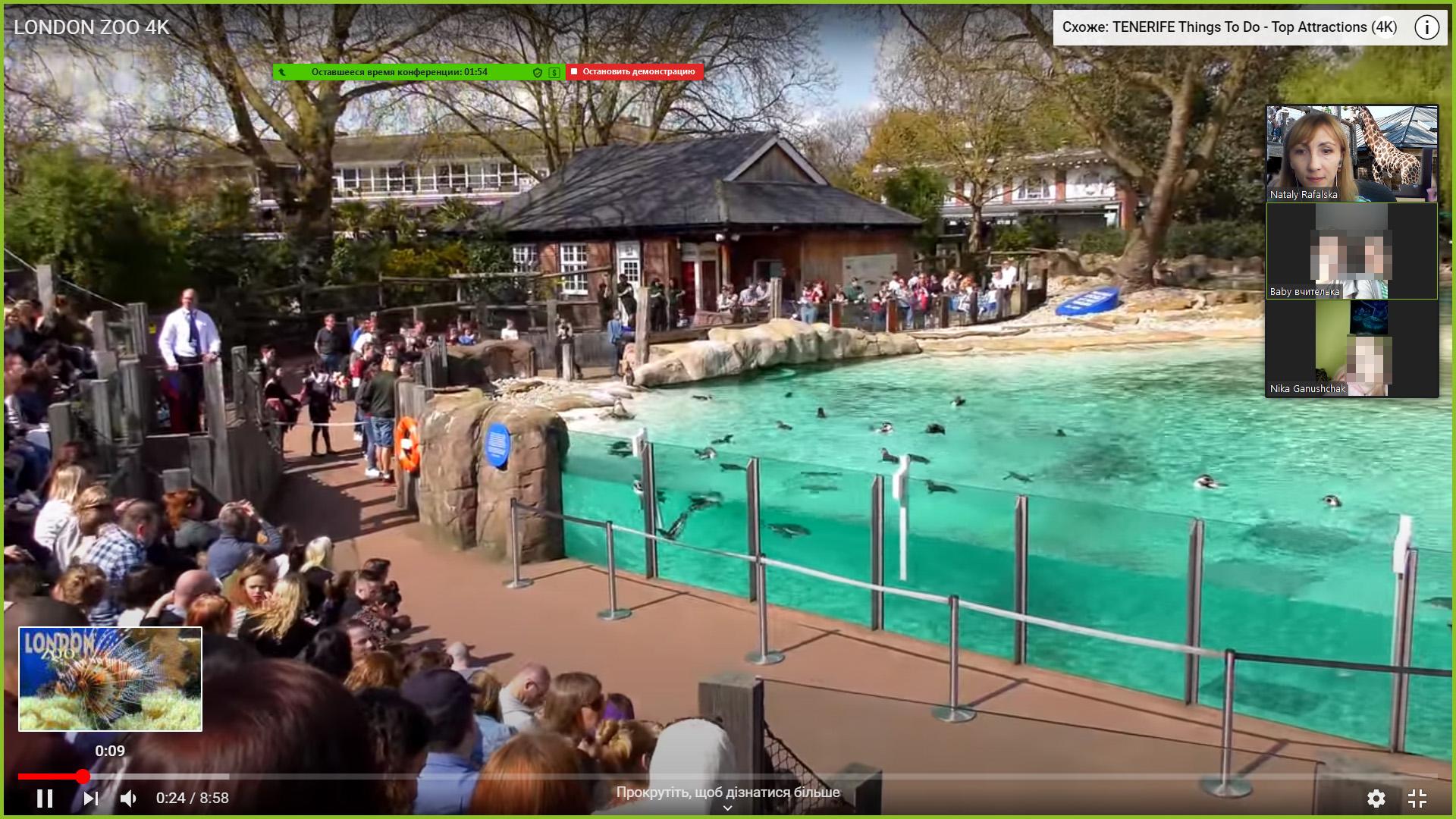 Virtual Excursion to London Zoo